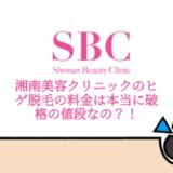 SBC料金